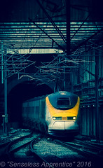 """Blue Star"" (MSRail Photography) Tags: photoshop eurostar emu passenger 373 eps class373"