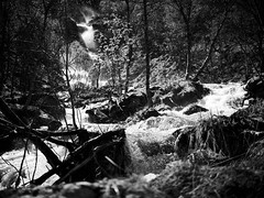 Sturzbach (stefandinkel) Tags: bw wasser wasserfall norwegen bach m43 mft olympusomdem1 stefandinkel