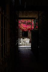 Syros Island, Greece (Ioannisdg) Tags: island flickr greece gr syros egeo ermoupoli ioannisdg ioannisdgiannakopoulos gofsyr