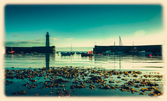 Mickybo and Me (RonnieLMills) Tags: lighthouse seaweed reflections harbour donaghadee mickyboandme
