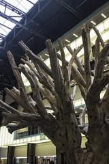 Tree 2010 by Ai WeiWei, Turbine Hall, Tate Modern, London (IFM Photographic) Tags: img8708a canon 600d tamron 1024mm sp1024mmf3545 tamronsp1024mmf3545 london londonboroughofsouthwark southwark tate tatemodern banksidepowerstation bankside artgallery gallery art turbinehall tree2010 aiweiwei