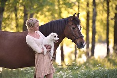 Family (Hestefotograf.com) Tags: family pink summer horse dog love water beauty animal oslo norway fog river bareback caballo cheval freedom pretty moments friendship canine norwegian pony welsh curious cavalo pferd stallion fra equine fuchs hest equus paard palomino hst 1721 ponni equinephotography equinephotographer hestefotograf