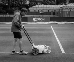 Line painting......explored (tom ballard2009) Tags: park white lines court painting sussex mono lawn line tennis international eastbourne wta groundsman