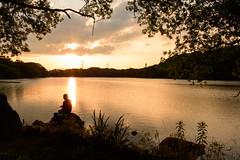 42Yamada Pond Park (anglo10) Tags: sunset japan