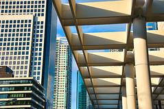 The Two Sides of the Street (DigitalLUX) Tags: glass buildings florida miami streetphotography streetscene highrises urbanlandscape architecturaldetails urbanscene brickellave