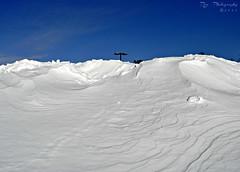 Adrift! (ii) (REA_26) Tags: winter snow weather nemo connecticut snowdrift snowstorm newengland historic snowfall epic drift winterstorm winterscape winterscapes 2013 winterstormnemo