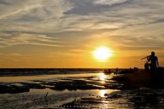 Sunset Fever (Lohb) Tags: sunset sun silhouette landscape dusk fullframe selangor  hotsun sekinchan 24105mm  canon6d sunsetfever pantairedang