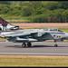 RAF Tornado - 617Sqn Anniversary Scheme -
