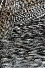 Texture (brittany_millan) Tags: wood trees tree texture lines contrast washington log olympic washingtonstate olympicnationalpark peninsula hohrainforest hallofmosses woodgran
