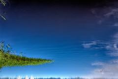 Gestalt (paulo jolkesky) Tags: blue sky water gua espelho azul mirror cu imagination imaginary reflexion reflexo imaginao
