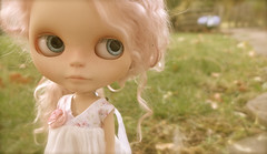 Where is Lilly? (Big Red Angel) Tags: doll basket gardening ooak barbie tools size mae diorama henriettejardin customblythemelacacia