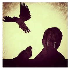 Shadowing (Alex ng) Tags: shadow bird smile dark children photography kid tears alone child pigeon cover always conceptual loveless