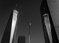 09-23-2013 (whlteXbread) Tags: 35mmf2 blackandwhite freedomtower newyorkcity newyork worldtradecenter 2013 bw dailies m9 morning nyc summer summicron vacation faceit365:date=20130923