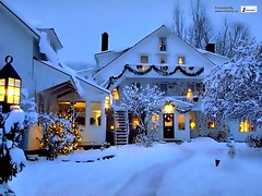 Christmas winter picture (Infoway LLC - Website Development Company) Tags: wallpaper beautiful wonderful nice superb awesome images exotic hd illustrator incredible breathtaking classy mindblowing snowforest christmascottage houseinsnow snowypine deerwallpaper cottageonthelake responsivewebsitedesign winterforestwallpaper winterforestinmorning wintersnowanimatedwallpaper wintersnowycabbinwallpaper sunsetoversnowwallpapers responsivewebdesigncompany worldegyptpyramid christmaswinterpicture wintertreeinsnow snowycottageswallpaper wintersnowchristmastree beautifulwhitehousesnowcottagehdwallpaper laketreeswallpaper