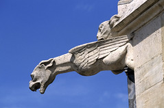 Amiens, cathédrale Notre-Dame, gargouille (Ytierny) Tags: sculpture france statue horizontal architecture religion amiens gargouille picardie edifice somme catholique cathédralenotredame culte pierrecalcaire amienois stylegothique robertdeluzarche ytierny