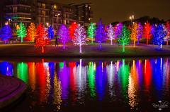 20131204_Vitruvian Park_0087.jpg (Kari Silva Photography) Tags: park christmas trees holiday colors lights nikon texas tx christmaslights addison holidaylights vitruvian d5100 vitruvianpark