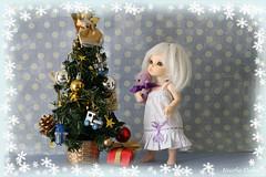 IMG_3576 copy (nicole_duke) Tags: baby fairyland pipi littlefee