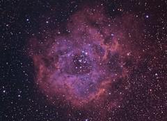 Rosette Nebula RGB+HaOIII (Chuck Manges) Tags: rosette Astrometrydotnet:status=solved qhy9m Astrometrydotnet:id=nova190518