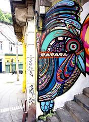 #pajarito#colores#vida#arte#valpo (goodtime_themusic) Tags: arte colores vida valpo pajarito flickrandroidapp:filter=none