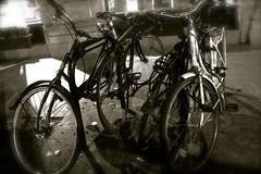 (laufar1) Tags: blackandwhite bike retro bicycles bikeshed lockandkey