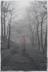 Fog 1-2014-0010-LM (ta2lydia.photoshots) Tags: nyc people fog forest ghost parks illusion splash trickphotography forestpark newyorkphotography splashphotography nycfog