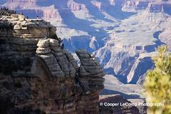 GO to your doom... (Cooper LeComp Photography) Tags: vacation arizona beautiful pretty desert grandcanyon views