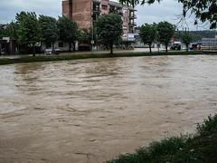 P1080489 (Stefan Teodosić) Tags: nature water rain flood floods catastrophy poplava poplave destaster