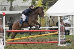DSC09946_s (AndiP66) Tags: horse sports sport schweiz switzerland sony september bern alpha concours pferd equestrian ch horsejumping wettbewerb 2016 springen f456 hindelbank kantonbern pferdesport sonyalpha springreiten cantonberne jegenstorf andreaspeters jegensdorf pferdespringen sony70400mm 77m2 sal70400g2 sony70400mmf456gssmii a77ii ilca77m2 77ii 77markii slta77ii 23april2016