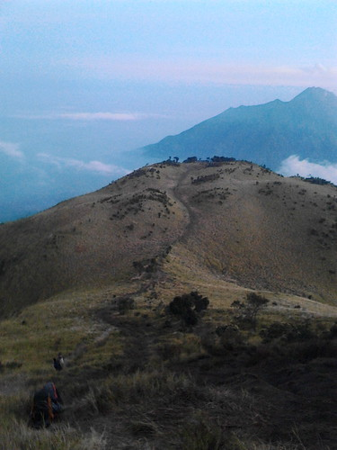 "Pengembaraan Sakuntala ank 26 Merbabu & Merapi 2014 • <a style=""font-size:0.8em;"" href=""http://www.flickr.com/photos/24767572@N00/26558486553/"" target=""_blank"">View on Flickr</a>"