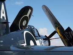Chance Vought F4u Corsair (Jonathan Saull) Tags: aviation air duxford usaf airdisplay iwmduxford chancevoughtcorsair historicaircraft americanwarbird duxfordwarbird olympusomdem1 historicusaf olympusmzuiko1240mmedf28 olympusmzuiko40150ed28pro