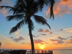 I Could Call this Home.... (guarnc) Tags: sunset tree key palm largo