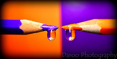 Naranja y violeta - Orange and violet (Daroo Photography) Tags: wood light shadow orange color macro reflection luz water pencil creativity photography madera agua nikon flickr violet sombra drop colores tip reflejo punta 5200 colored crayons gota fotografia naranja creatividad violeta lpiz lapices daroo d5200 daroophotography