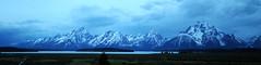 ttnut-01 (srosscoe) Tags: nature geology tetons grandtetonnationalpark jacksonlake jacksonlakelodge