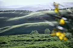 (claudiophoto) Tags: italy landscape spring unesco tuscany toscana paesaggio paesaggiitaliani paesaggitoscani tuscanylandscape fototoscana immaginetoscana