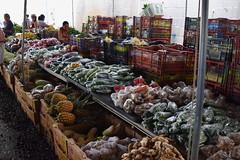 Farmer's Market in Hilo (tsob123) Tags: hawaii market hilo
