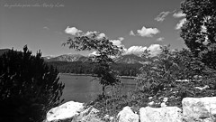Nature view,in the Italian Alps (friedrichfrank1966) Tags: italien sea bw sun mountains monochrome forest montagne see view berge vista alpen sole sonne wald blick