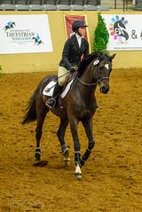 160505_D600_3679.jpg (shirley319) Tags: horse unitedstates lexington kentucky may nationals equestrian 2016 d600 horsecompetition ihsa kentuckyhorsepark