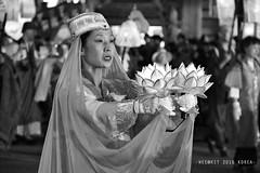 Lotus Lantern Festival 연등회 (WeeKit) Tags: korea parade seoul procession 2016 buddhasbirthday lotuslanternfestival 연등회