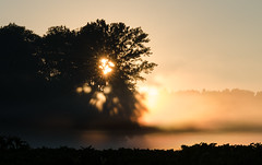 Bavaria is waking up (Tobiasvde) Tags: sun fog sunrise germany bayern deutschland bavaria nikon nikkor 70200 f28 vr duitsland ingolstadt beieren pfaffenhofen d7000