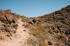 5R6K2912 (ATeshima) Tags: arizona nature havasu