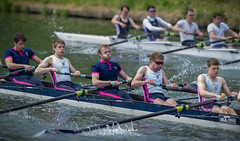 CA-5_16-1238 (Chris Worrall) Tags: chrisworrall chris worrall cambridge rowing 99s club spring regatta water river sport splash race competition competitor dramatic exciting 2016 theenglishcraftsman