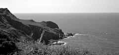 The woolacombe coast (Sazzaheaton) Tags: sea sky plants white black nature grass contrast out point horizon calming calm headland contast