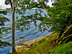 Schleiufer - Schleishore (Ostseeman) Tags: wasser steilküste schleswigholstein schlei