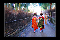 Maikos' Being Chased by Vincent Van Gogh Part 2 (Emet Martinez Photography) Tags: painterly kyoto arashiyama maiko bambooforest photopainting photoartwork emetmartinezphotography emetmartinezcom topazimpression vincentvangoghbrushstrokes