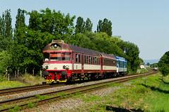 Jerry (Nikis182) Tags: vracov eleznice morava esk republika czech republic railway nikis182