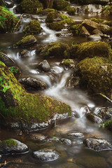 Scale Haw Force (_skynet) Tags: park light brown green art nature water river waterfall nationalpark moss rocks aqua outdoor yorkshire fresh yorkshiredales scalehawforce