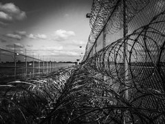 prison-fence black and white (JobsForFelonsHub) Tags: white black fence wire prison barbed