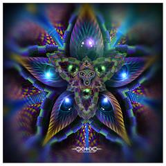 """Cerebral Bloom detaıl • <a style=""""font-size:0.8em;"""" href=""""http://www.flickr.com/photos/132222880@N03/27717386150/"""" target=""""_blank"""">View on Flickr</a>"""