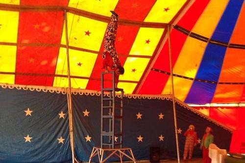 escola_de_circo_(4)