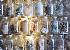 (kara o'keefe) Tags: mason jar masonjar lights ocean sea blueonwater water stjohns newfoundland decor twigs pines seashell coral decoration restaurant
